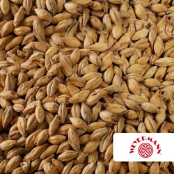 Weyermann Pale Ale Malt (EBC 5.5 - 7.5)     Save Save and close LANGUAGE:  English  General Images SEO Options Shipping Properties Quantity discounts Files to sell Subscribers More Information   Name  Weyermann Pale Ale Malt (EBC 5.5 - 7.5)